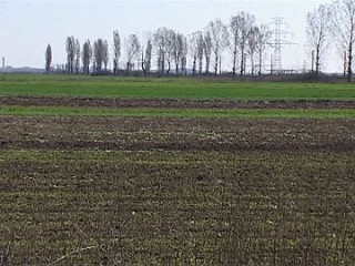terenuri-agricole-5