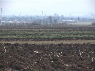 terenuri-agricole-(2)