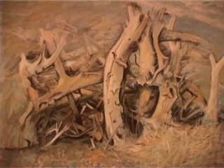 expozitie-pictura-sinaia-3