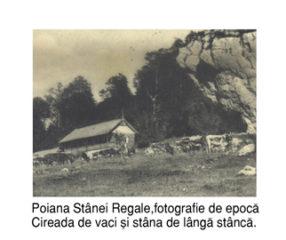 Stana-Regala-fotografie-de-epoca